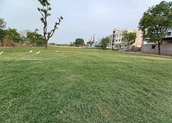 garden-for-marriage-in-udaipur